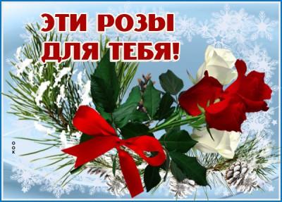 Открытка зимняя картинка красивые розы для тебя