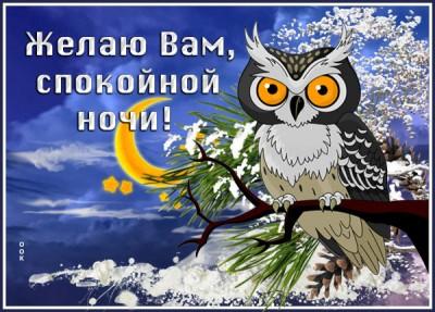 Картинка зимняя картинка спокойной ночи