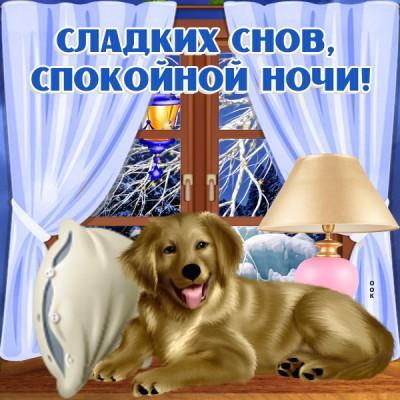 Открытка зимняя картинка спокойной ночи с собакой